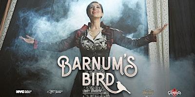 Barnums Bird (Night 2)