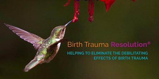Birth Trauma Resolution Therapy Within The Midwifery Services - Study Day