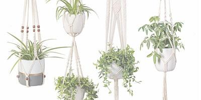 DIY MACRAME PLANT HANGER WORKSHOP