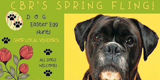 Carolina Boxer Rescue Spring Fling