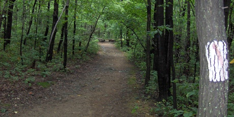 Mothers Day Hike 2020 RAIN OR SHINE tickets