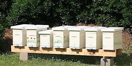 Bucks Beekeepers: Making Splits and Nucs tickets