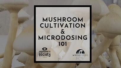 Feb 29th - Mushroom Cultivation & Microdosing 101 tickets