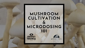 Feb 22nd - Mushroom Cultivation & Microdosing 101