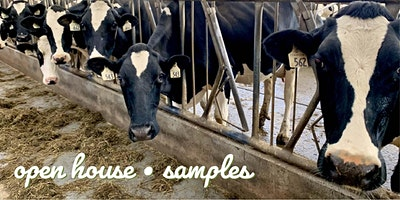 Farm Day at Cowichan Milk Company