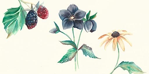 Winsor and Newton  Water Colour Botanical Workshop - Eckersley's Minyama