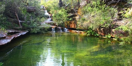 Hominy Creek trail via Emerald pool. tickets