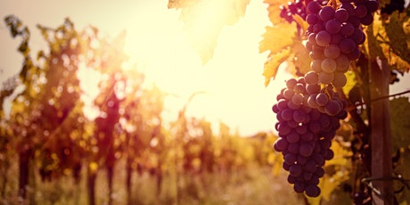 Fullerton Oregon Wines Seminar with Matt Wieland tickets