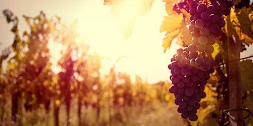 Fullerton Oregon Wines Seminar with Matt Wieland