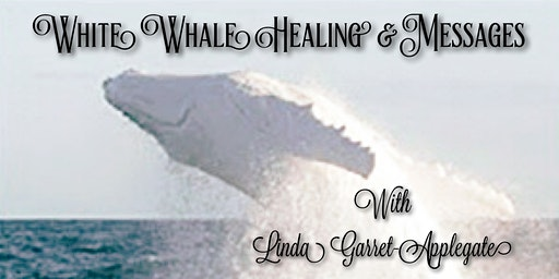 White Whale Healing & Messages