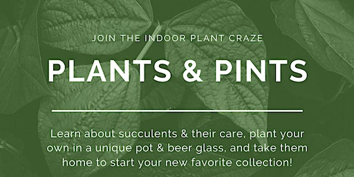 Plants & Pints Succulents Workshop