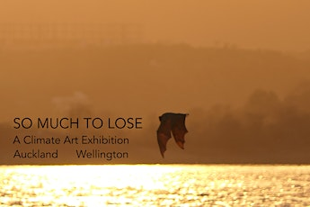 SO MUCH TO LOSE: Wellington Art Exhibition tickets