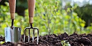 Home Organic Vegetable Gardening (Vincentia)