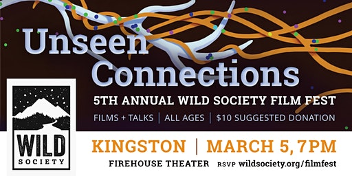 Unseen Connections: Wild Society Film Fest—KINGSTON