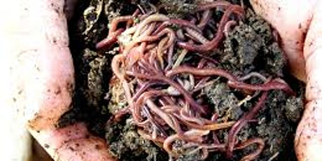 Introduction to Worm Farming (Nowra) tickets