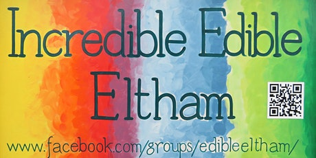 Incredible Edible Eltham - Winter vegetable planting workshop tickets