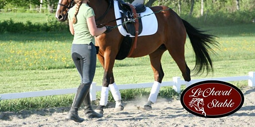 EQUESTRIAN CONNECTION | for Homeschoolers