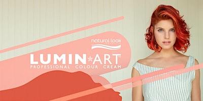 LUMINART: Colour Correction/Toning