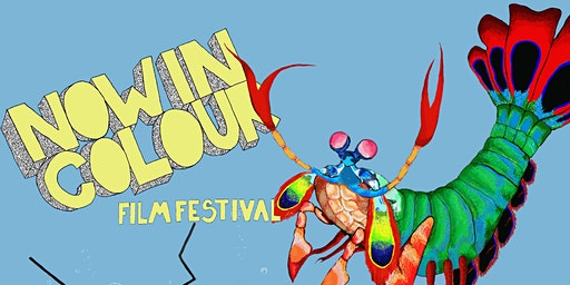 Now In Colour Film Festival - 2020