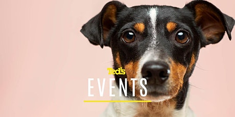 Sony - Pet Photography with Animal Eye AF | Sydney (119550) tickets