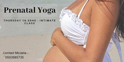 Prenatal Yoga in TLV