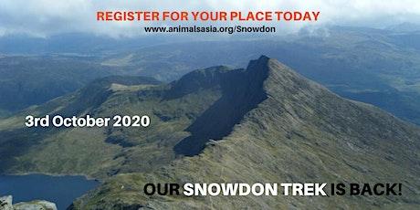 Trek Snowdon with Animals Asia tickets