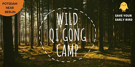 Wild Qi Gong Camp | Fahrlander See / Potsdam tickets