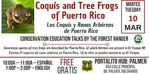 Los Coquís y Ranas Arbóreas de Puerto Rico / Coquis & Tree Frogs of Puerto