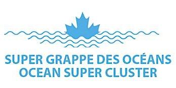 Atelier de réseautage sur La Super grappe des océans