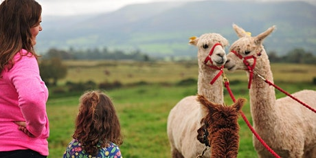 Walking with Alpacas tickets