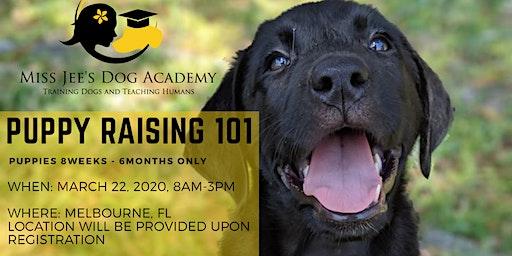 Puppy Raising Class