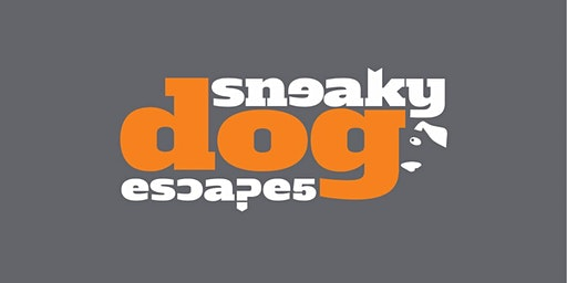 Benefits Fair:  Virtual Reality Puzzles with' Sneaky Dog Escapes'