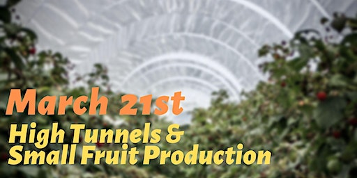 High Tunnels and Small Fruit Production