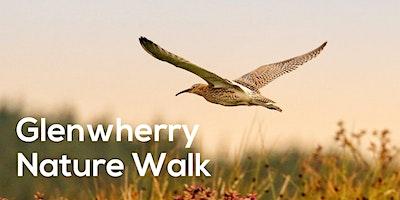 Glenwherry Nature Walk