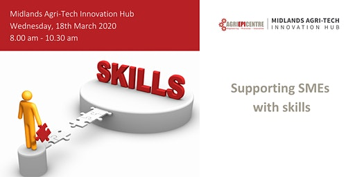 Supporting SMEs with skills