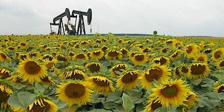 Le futur du pétrole en question ! billets