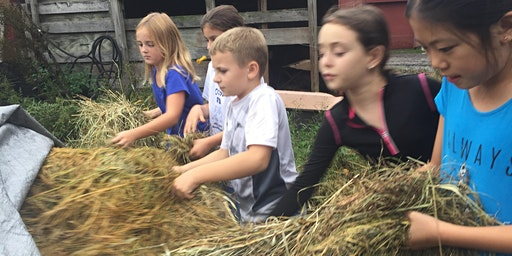 Sunday Evening 2/16 Farm Drop In! (Grades 1st - 5th)