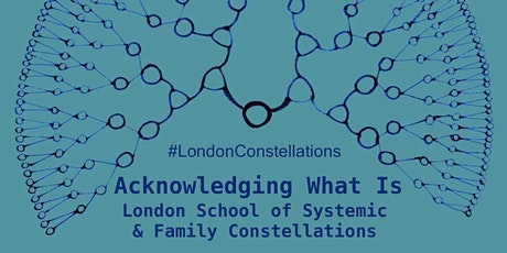 On the Edge of the Unknown Pt 2-Tools & Guidance for Constellations Facilitation tickets