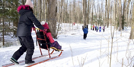 March Break Family Days at the Tiffin Centre tickets