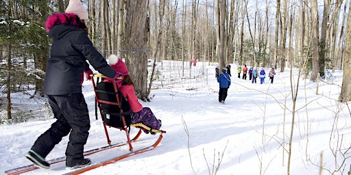 March Break Family Days at the Tiffin Centre