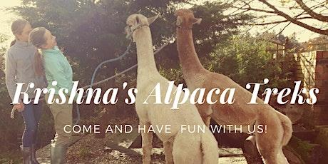 Alpaca Trekking tickets