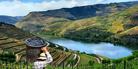 WineNot Boutique Wine and Gastronomy Tour to Portugal  tickets