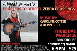 Zebra Crossings Night of Music & Silent Auction