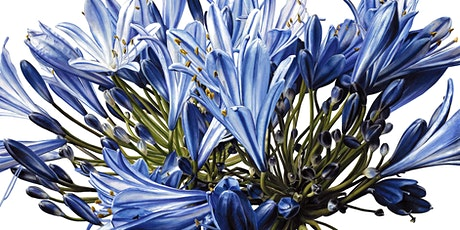 Waterloo Botanical Painting workshop with Jess Shepherd (Inky Leaves) tickets
