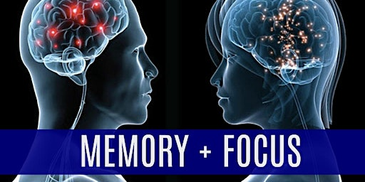 Memory Loss & Focus: A Holistic Approach to Brain Health