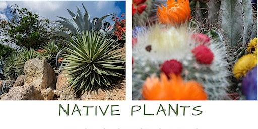 NATIVE PLANTS - 2020