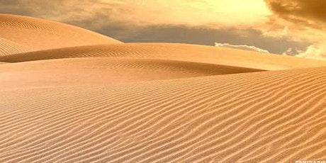 Entre Palácios e Desertos ingressos
