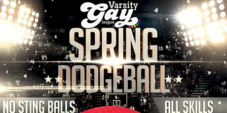 VGL Fairfield County: Queer+ Dodgeball - FREE Open Play tickets