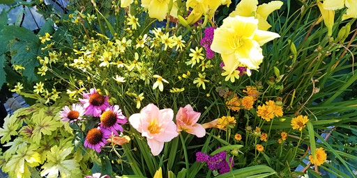 Perennial Garden Design: Part 1