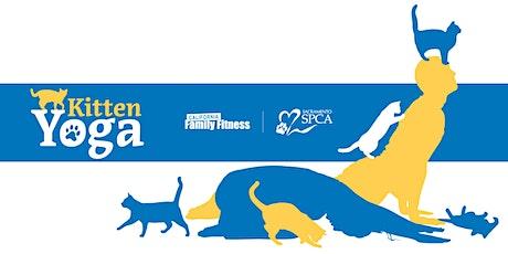 FAMILY Kitten Yoga, Benefiting the SPCA (Arden) tickets